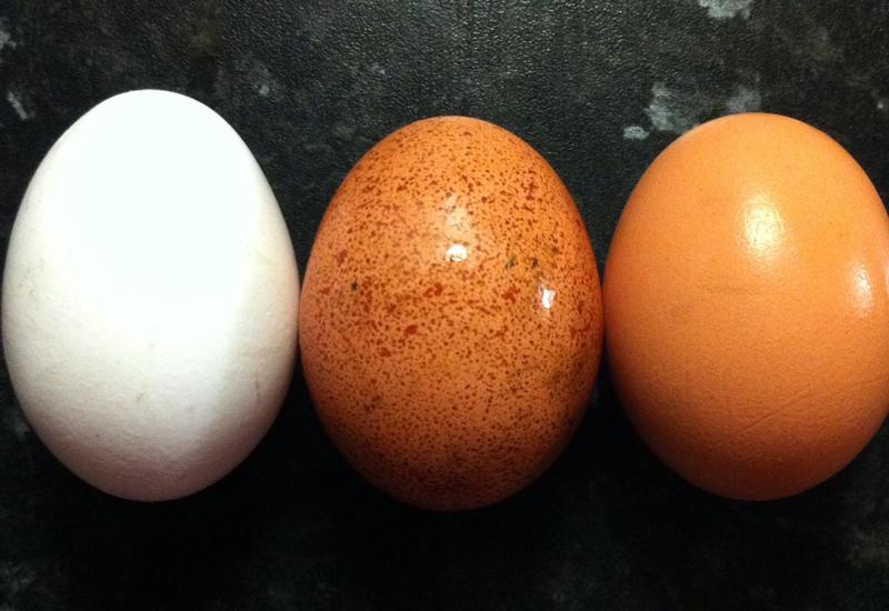 Яйца Одно яйцо — 6 граммов белка и только 70 калорий. Не забудьте вынуть желток, вы не в детском саду. Питаться только яйцами, конечно же, не стоит, а вот завтракать ими — вполне.