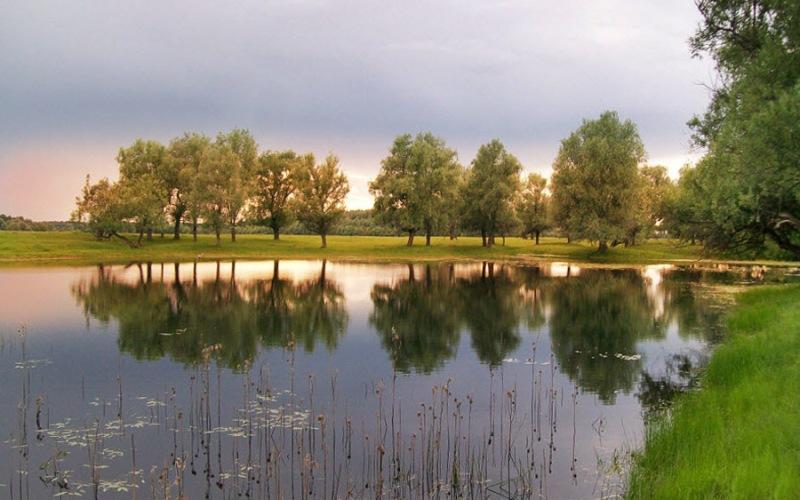 Озеро Шайтан Овальное озеро на юге Кировской области удивительно красиво, но местные жители стараются обходить его стороной. Все дело в том, что иногда из озера поднимаются столбы воды, наподобие гейзеров. По древней легенде, на дне озера живет демон, и когда он сердится, вода бурлит и выплескивается фонтанами. Необычное поведение озера легко рационально объясняется его происхождением: водоем является карстовым колодцем. В его глубине расположены артезианские воды, находящиеся под давлением. Случайно попавшие в трещины разломов куски торфа образуют пробки, которые вылетают под большим давлениям, а на поверхность вырываются без всякой закономерности фонтаны воды. На сегодняшний момент озеро Шайтан привлекает множество туристов и рыбаков.
