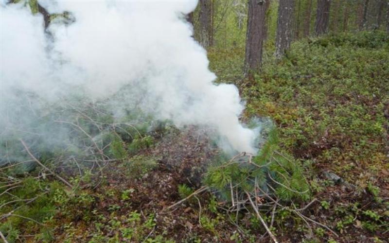 Дым А в дневное время ваше месторасположение можно точно указать при помощи дыма. Дым от сигнального костра должен быть хорошо заметен и создавать контраст с цветомокружающей местности. Белый дым даст сырая древесина или свежие листья. В облачный или туманный день хорошо различимый черный дым, который можно создать, если поджечь резину и пропитанную маслом на нефтяной основе ткань.
