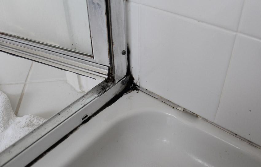 Грибок в ванной Из-за повышенной влажности и недостаточного проветривания на стенах ванной комнате иногда появляется грибок. Чтобы его вывести, необходимо высушить зараженный участок, например, при помощи фена и обработать поверхность противогрибковым препаратом. Если очаг распространения грибка небольшой, в качестве него можно использовать перекись водорода. Ей обрабатывают место и оставляют на 3-5 минут, после чего смывают. Для борьбы с застарелыми пятнами потребуется специальное средство против грибка.