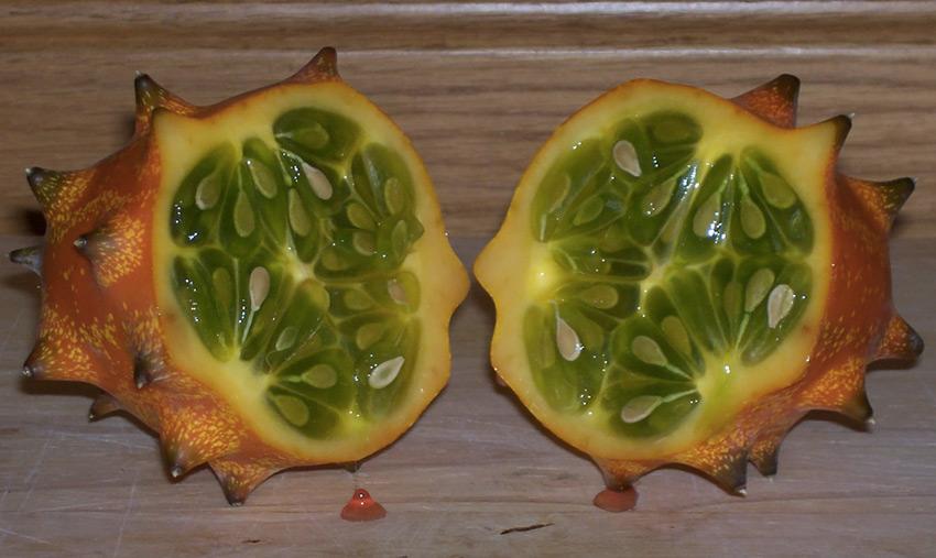 Африканский огурец      Фрукт с шипами содержит желеобразную мякоть с бледно-зелеными семенами. По вкусу она напоминает нечто среднее между огурцом и цуккини. Фрукт едят как в сладком, так и соленом виде, добавляя его в молочные коктейли, фруктовые напитки, а также в соленые салаты. Африканский огурец широко культивируется в Калифорнии, Центральной Америке, Новой Зеландии, Израиле.