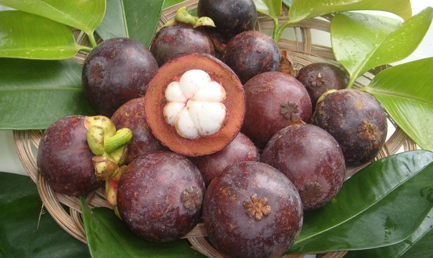 Мангостан      В странах Юго-Восточной Азии фрукт так же популярен, как у нас, к примеру, яблоки. Толстую бордово-фиолетовую кожу не едят, а белая мякоть плода съедобна даже в свежем виде. Из нее также делают свежевыжатый сок.