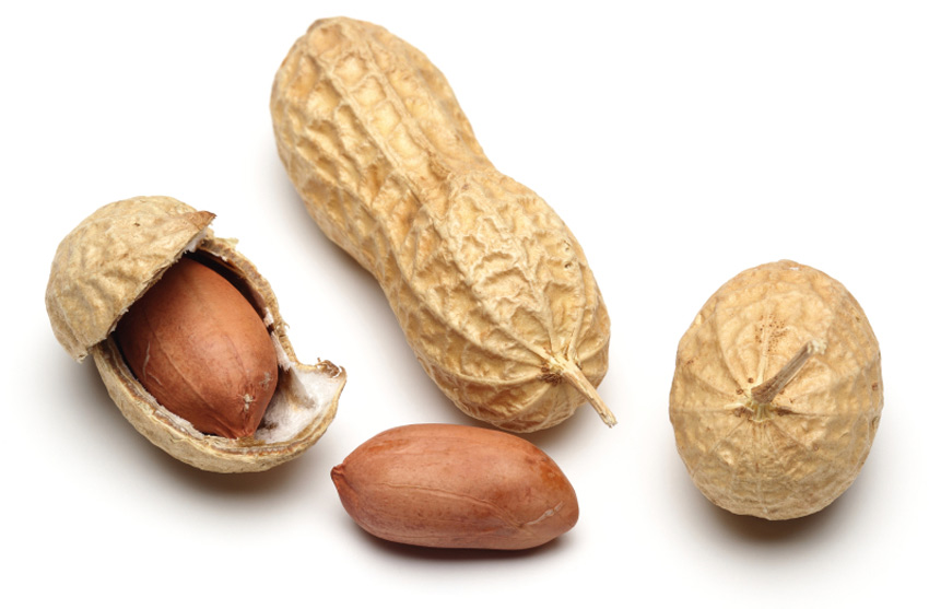 Арахис&lt;br /&gt;&lt;br /&gt;<br /> Технически арахис относится к растениям семейства бобовых. Культивируют его именно для получения семян, которые многие считают орехом. Арахис богат фолатом — витамином B9, необходимым для нормального функционирования нервной системы, синтеза ДНК и РНК и правильного функционирования мозга. Умеренное употребление арахиса стимулирует деятельность мозга, а в пожилом возрасте защищает мозг от ослабления умственной деятельности.