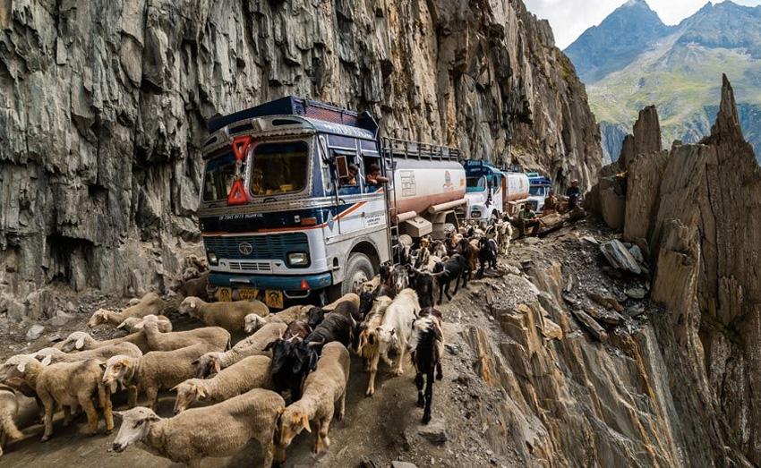 Zojila Pass, Индия Дорога связывает населенные пункты Ладакх и Кашмир. 9-километровая дорога, помимо всего прочего, еще и достаточно узкая, и умещаться на ней порой приходится и автомобилистам, и домашней скотине. Дорога проходит на высоте 3353 метра над уровнем моря.