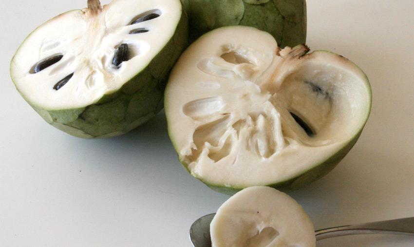 Черимойя      Вкус этого экзотического фрукта напоминает сочетание ананаса, манго, клубники, банана и маракуйи. Впервые культивировать его начали в предгорьях Анд. Оттуда он распространился по Новому Свету и за его пределы в такие страны, как Австралия, Индия, Испания, Израиль, Португалия, Италия, Египет и многие другие. Фрукт употребляют либо в свежем виде, либо добавляют его в прохладительные напитки, мороженое и готовят с ним фруктовые салаты.