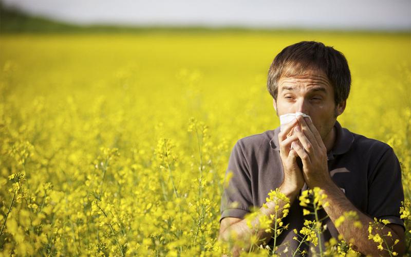 Аллергия от травы нормализующие кровообращение мозга - bb537