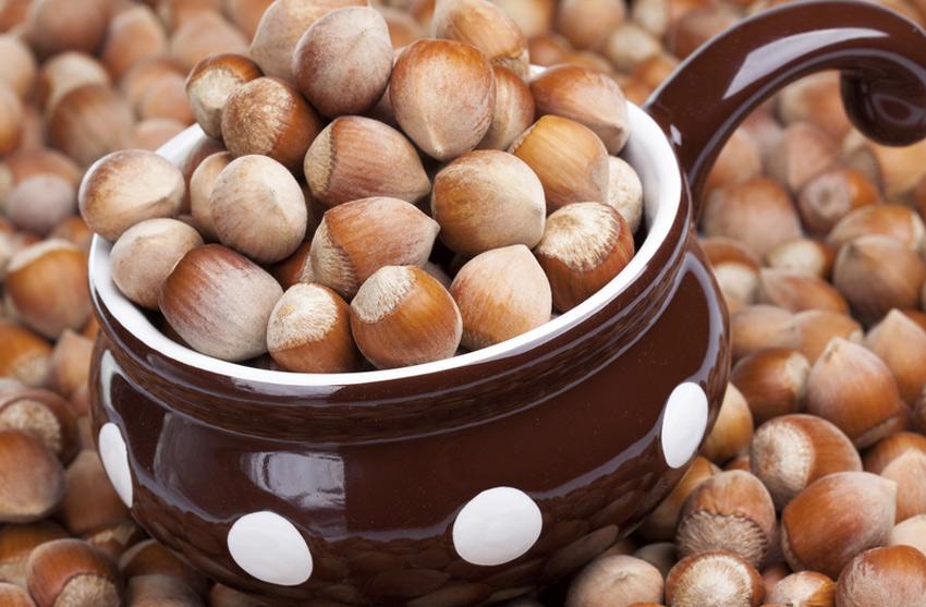Фундук&lt;br /&gt;&lt;br /&gt;<br /> Лесной орех содержит все необходимые нам аминокислоты, а также витамины группы B, А, С, Е, РР. Содержание железа в фундуке выше, чем в мясе. Фундук помогает выводить из организма токсины и шлаки, укреплять иммунитет, а наличие в нем вещества Taxol препятствует образованию и развитию опухолей.