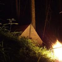 Поход в лес: важные советы