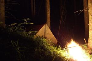 У костра в ночном лесу