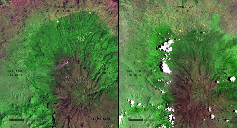 Вырубка лесов Национальныйпарк Маунт-Элгон, Уганда Слева: 1973год Справа: 2005 год