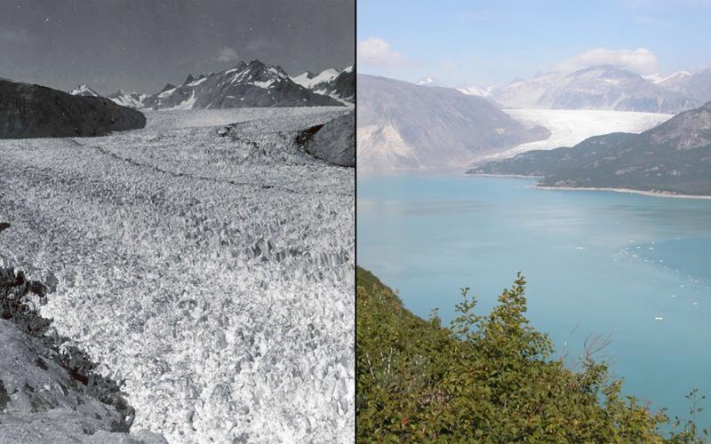 Таяние ледника Мьюир Аляска Слева:1941 год Справа:2004 год