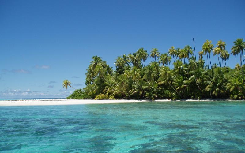 Военно-морской заповедник Чагос Площадь: 545000 км²  Архипелаг Чагос, принадлежащий Великобритании, расположен в 500 километрах от Мальдивских островов. Он является крупнейшим в мире морским заповедником, своей площадью превышая размеры такой страны, как Франция. На территории заповедника наблюдается одна из наиболее богатых жизненными формами морских экосистем. Здесь можно встретить множество удивительных и редких животных.