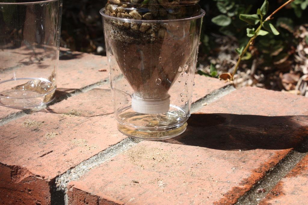 Профильтруйте воду Установите импровизированный фильтр над той емкостью, куда вы будете сцеживать чистую воду и залейте немного воды в фильтр. Чтобы вода полностью очистилась, вам придется еще несколько раз пропустить ее через фильтр. Тогда вода станет достаточно чистой и пригодной для питья.