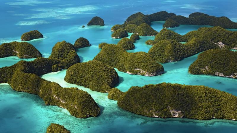 Скалистые острова,Палау Острова, покрытые густой растительностью и напоминающие с воздуха грибы, являются главной достопримечательностью Палау. Славятся они своими пляжами и прозрачными голубыми лагунами. Большинство из них населяют лишь редкие птицы и животные.