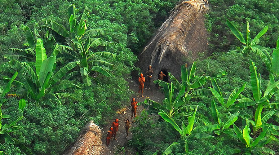 Долина Джавари Бразилия Этот регион, где проживает по меньшей мере 14 не контактировавших с цивилизацией племен Амазонки, является одним из самых изолированных мест в мире — еще и потому, что так определило их жизнь правительство. Около 2000 коренные жителей полностью автономны от бразильского правительства. Размеры ареала их обитания сравнимы с Австрией. Право племен жить в изоляции защищено федеральным агентством, а специальные силы курируют границы, охраняя их от вторжения посторонних.