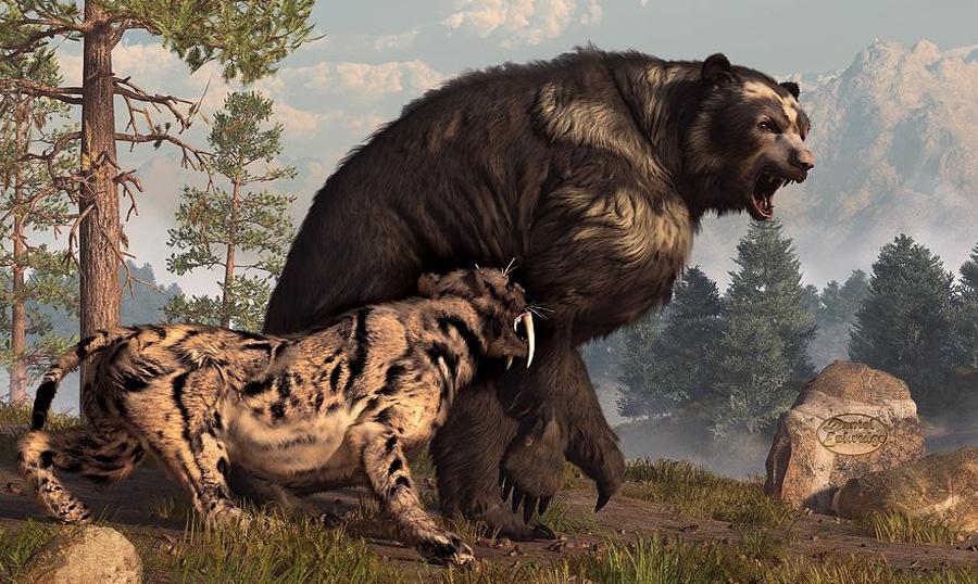 Короткомордый медведь Гигантский вид из семейства медвежьих населял планету в конце плейстоцена, около 44 000 и 12 500 лет назад. Обитало животное в Северной Америке. Судя по останкам, высота медведя в холке составляла до 1,8 метров, а вес около 600 кг, крупные же особи могли достигать 1100 кг. Медведь охотился на крупных животных вроде бизонов, лошадей и оленей.