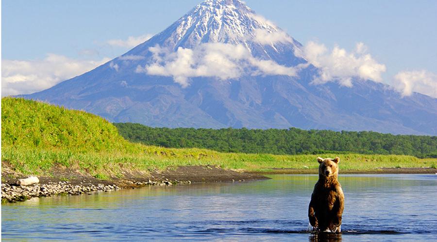 Камчатка Россия Полуостров, расположенный на востоке России, является одним из самых богатых и еще неисследованных во всем мире. Здесь функционируют более трех сотен вулканов, в том числе и тот, что непрерывно извергается аж с 1996 года. Очень разнообразна местная флора и фауна. На Камчатке живет больше всего бурых медведей, численность же населения — всего около 400 тысяч человек.