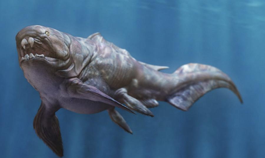 Дунклеостей Род панцирных рыб отряда артродир класса плакодерм жил 415—360 млн. лет назад, в девонском периоде. Это были крупнейшие морские хищники своей эпохи. Ученым так и не удалось определить точные размеры рыбы. Предположительно, их голова превышала один метр, а длина всего тела составляла не менее 6 метров и могла достигать 20 метров. Зубы рыбе заменяли мощные костные пластины, развивавшие давление в 55 МПа, что сопоставимо с укусом крокодила.