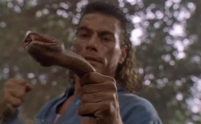Расправиться со змеей голыми руками Только неутомимому Жан-Клоду Ван Дамму под силу без всякого оружия, а лишь голыми руками справляться и с полчищами врагов, и со змеей. Вы Ван Дамм? Тогда не нужно махать кулаками при встрече со змеей. В этой ситуации у вас есть только один выход — уносить ноги побыстрее и подальше.