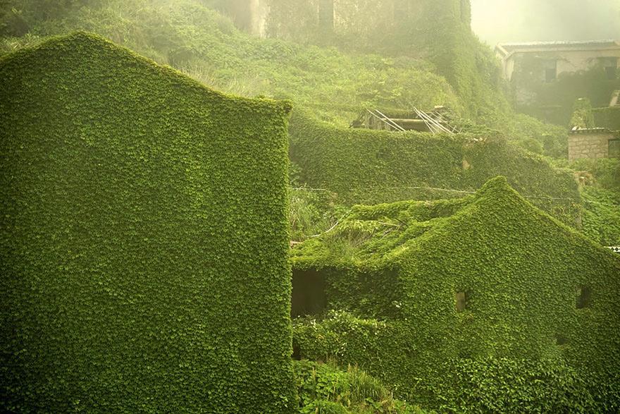 Растительность полностью поглотила постройки, сделав их частью окружающего пейзажа.