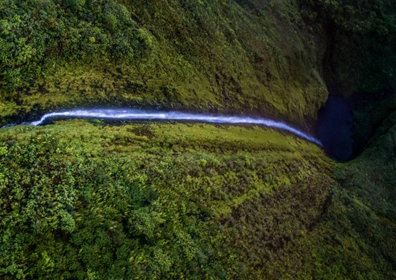 Хонокохау берет начало на высоте 341 метр, что делает его одним из самых высоких водопадов Гавайских островов.