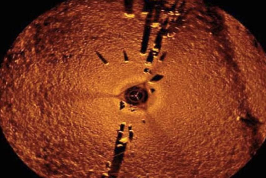 Стоунхендж озера Мичигана В 2007 году во время поисков затонувших кораблей гидролокатором группа исследователей обнаружила на дне озера Мичиган подводную структуру. На глубине около 15 метров под толщей воды располагается строение, напоминающее знаменитый Стоунхендж. Предполагается, что возраст конструкции составляет около 10 000 лет.