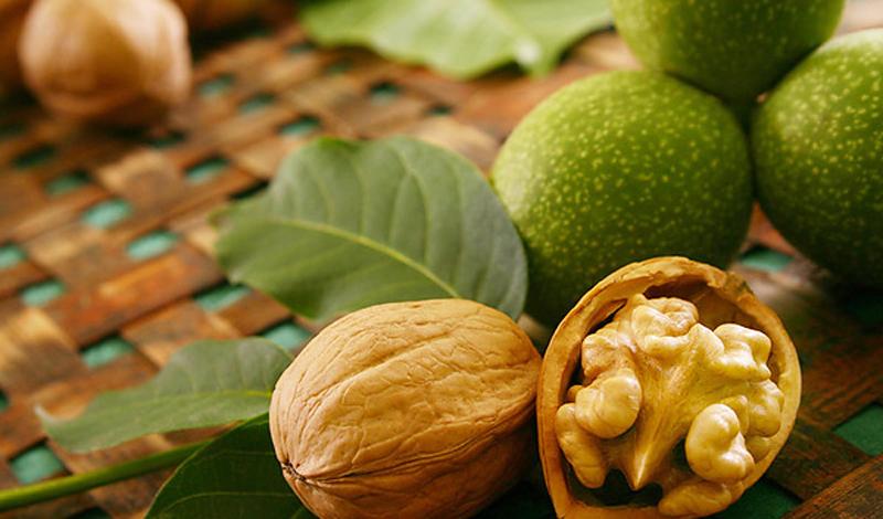 Грецкие орехи Энергетическая ценность орехов очень высока. Здесь же содержаться витамины, которые помогут преодолеть вам все тяготы долгого похода: А, В1, В2, Е, РР, С. Грецкие орехи богаты клетчаткой, железом, фосфором, кальцием и йодом. В принципе, сочетая орехи с шоколадом, вы вполне сможете продержаться, при необходимости, целый день в пути, даже не останавливаясь на полноценный привал.