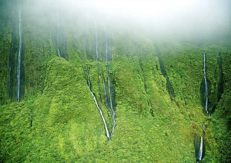Потоки воды ниспадают со склонов потухшего вулкана Ваиалеале. На некоторых участках склона образуется сразу несколько ручьев. Места, в котором стекает больше всего ручьев, также называют «стеной плача».