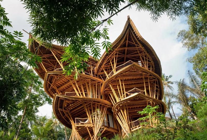 Еще одна работа дизайнеров — дом Sharma Springs. Он располагает четырьмя спальнями, которые возвышаются над джунглями. Конструкция выполнена в форме лотоса. Дом входит в топ самых высоких зданий из бамбука на Бали.