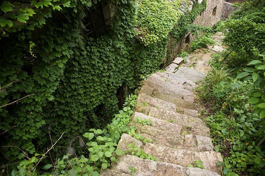 Благодаря теплому и влажному климату среди фасадов домов разрослись настоящие джунгли, практически полностью спрятавшие конструкции.
