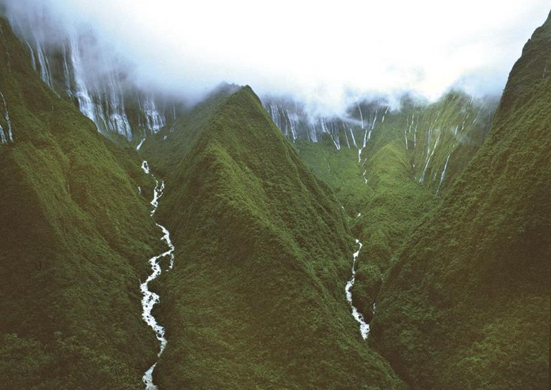 Окрестности Хонокохау считаются одним из самых влажных мест в мире. В год здесь выпадет 11500 мм осадков.