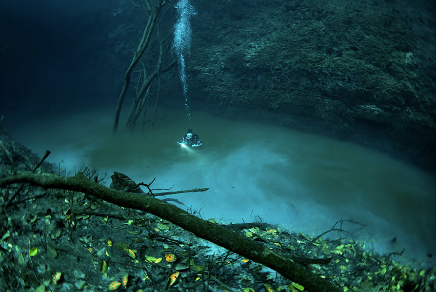 Подземная река Подводная пещера Анхелита в Мексике напоминает раздвоенный мир. Под толщей пресной воды в 30 метров картина походит на земной мир под водой: островки, деревья с опавшей листвой и целая подземная река, представляющая собой слой сероводорода.