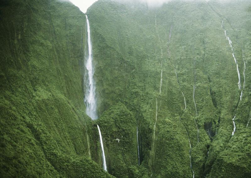 Водопад и его окрестная территория полностью находятся во власти дикой природы.
