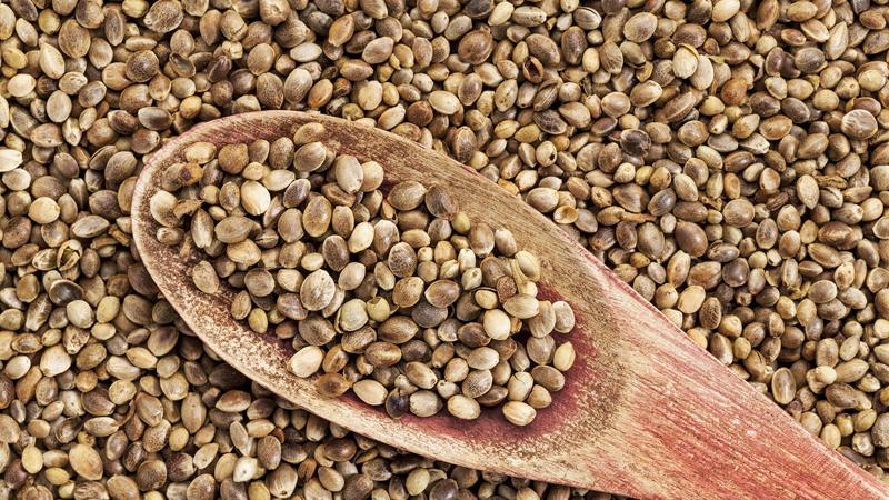 Семена конопли Белок: 10,3 г (21% дневной нормы)Клетчатка: 0,9 г (4%)Цинк: 3,2 мг (21%)Магний: 179 мг (45%)Жиры: 12,6 г (19%) Подобно льняному семени, семена конопли имеют ореховый привкус и содержат большое количество омега-3 жирных кислот. Высокий уровень магния поддерживает производство организмом энергии, а большое количество витамина Е позволяет спортсмену быть более выносливым.