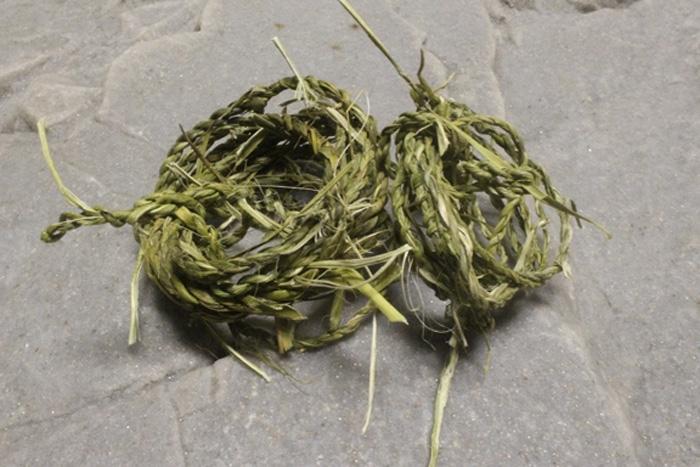 Веревка Растения с волокнистыми листьями идеально подходят для изготовления веревок. Подобными свойствами обладают, к примеру, листья рогоза, который часто можно встретить по берегам водоемов. Структура его листьев позволяет изготавливать из них не только канаты, но и плести корзины и грубую ткань. Достаточно порвать лист на небольшие волокна и переплести их между собой.