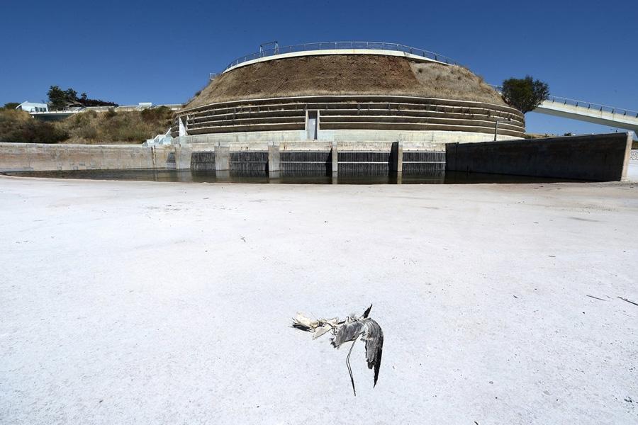 Олимпийская деревня, где когда-то проживали атлеты во время Олимпиады, сейчас напоминает город-призрак.