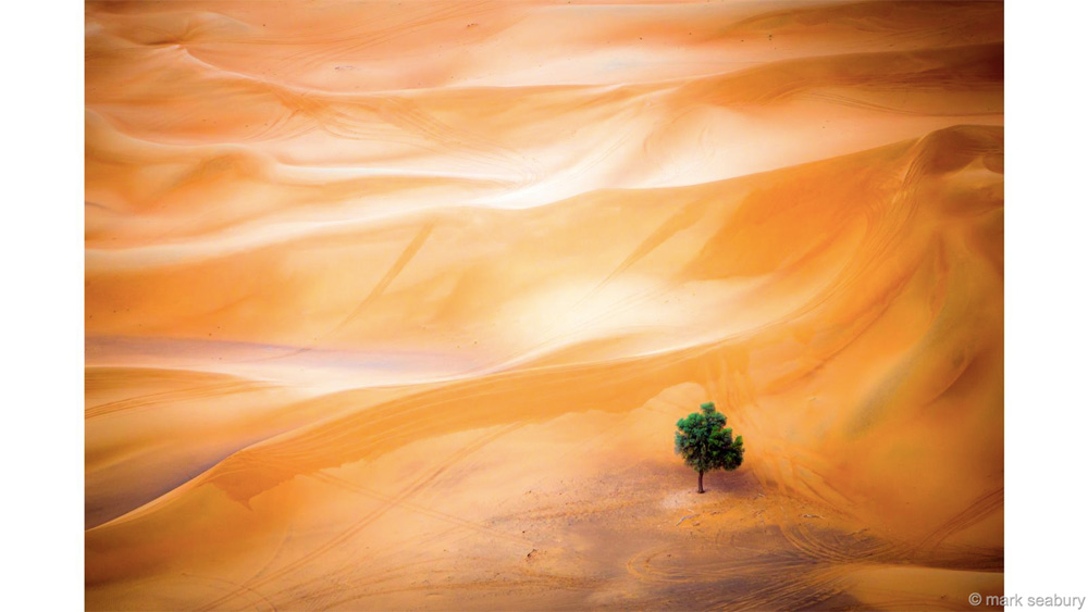 Природный холст Победитель в категории «Пейзажи и флора» Марк Сибури Среди дюн пустыни Дубая, где песок выглядит как бескрайнее море, Марк заснял одиночно стоящее дерево, как символ непоколебимой жизни в трудных условиях.