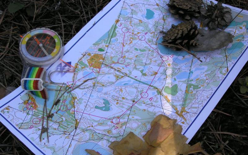 Компас и карта Без этих двух предметов в незнакомую или малознакомую местность лучше вообще не соваться. В лесу, где отсутствуют ориентиры, потерять верное направление очень легко, особенно в плохую погоду. Не советуем полагаться на GPS-навигатор: что вы будете делать, если батарея внезапно сядет или разобьется хрупкое устройство?