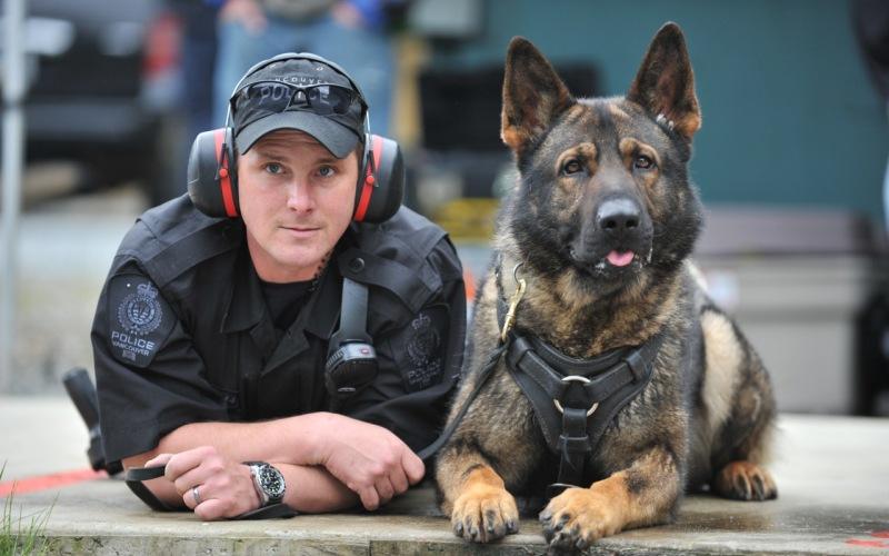 Любую собаку можно научить чему угодно Полицейские собаки – это специально натренированные псы, способные по запаху обнаружить наркотики и взрывчатку. Может быть, это не совсем то, чего ты хочешь от своей собаки, но все-таки этот трюк стоит взять на заметку. Просто связывая конкретный запах сначала с его любимыми игрушками, а потом и с любыми другими вещами, ты научишь пса искать и находить что угодно. И расстояние не будет иметь значения.