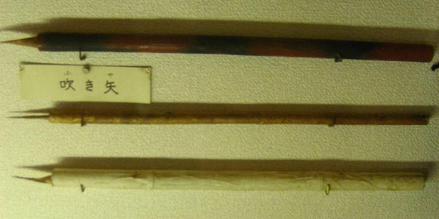 Фукибари Этими духовыми ружьями воины-ниндзя пользовались при атаке. Наконечники дротиков были отравлены сильнейшим ядом, что позволяло быстро разделаться даже с более сильным противником. Интересно, что в современной Японии существует вид спорта по стрельбе из фукибари.