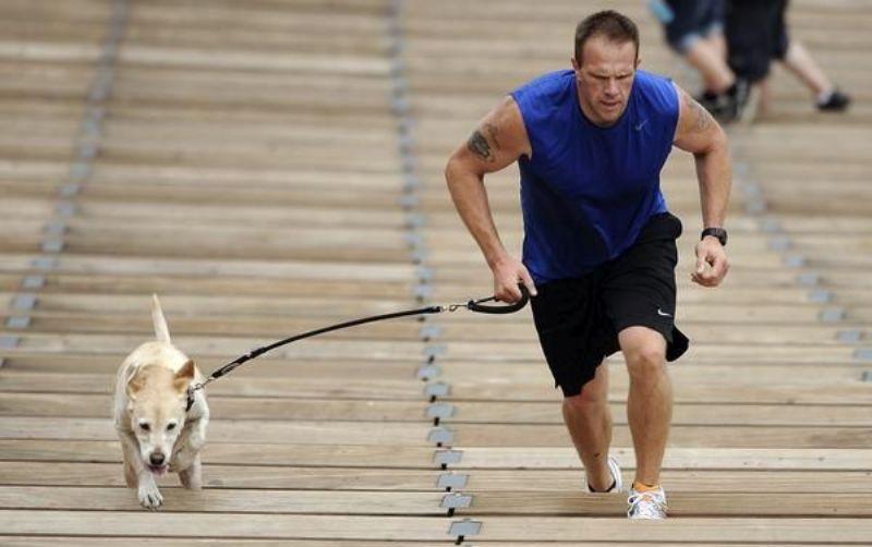 Спринт на пределе возможного Многие собаки любят соревнования, поэтому эта тренировка так эффективна. Отправляйтесь на ближайшую дорожку, отметьте стартовую линию и интервалы длиной в 2,5, 5, 7,5 и 10 метров. Встаньте на старт вместе с собакой и бегите к отметке 2,5 метра, затем поверните назад к старту. Продолжайте бежать, пока не доберетесь до последней черты 10 метров и вернитесь на старт. Повторите всю серию 8 раз, каждый раз давая себе минуту передышки.
