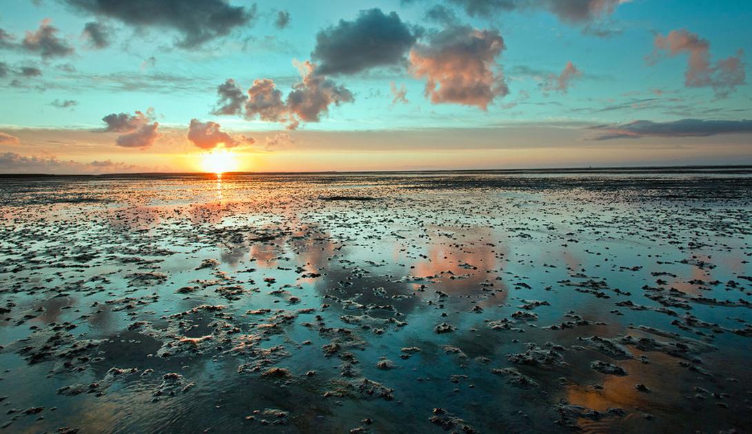 Ваттовое море Акватория Северного моря Ваттом зовется мелководный морской участок, которых здесь находятся десятки. Естественные процессы функционируют здесь без малейшего вмешательства человека, почти вся территория этого необычного моря охвачена тремя национальными парками.