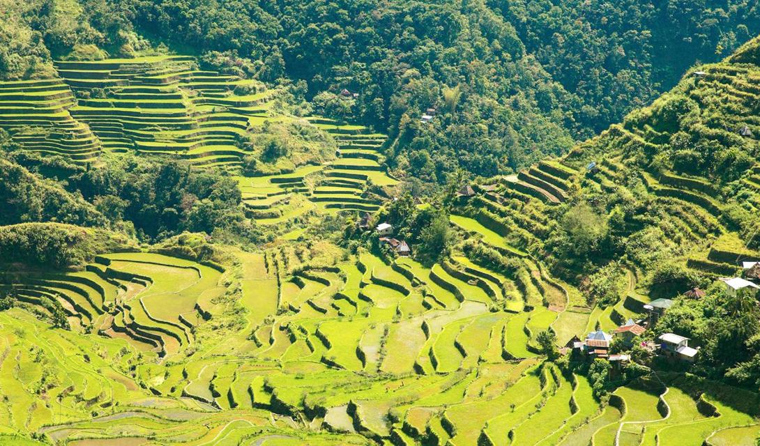 Небольшое, на полторы тысячи жителей, село Батад расположено среди зеленых рисовых террас Ифугао. В эту деревню нет широких дорог, но сложности похода сюда вполне оправданы видом, который открывается с рисовых полей.