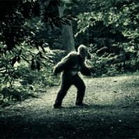 7 мифических существ, которые уже давно ищет весь мир
