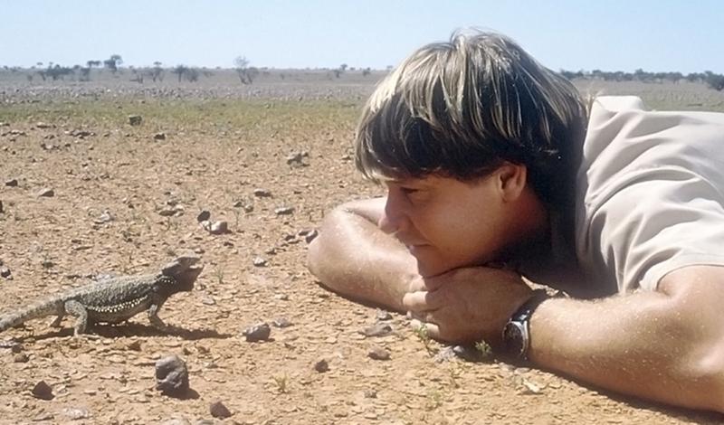 Стив Ирвин Знаменитый австралийский охотник на крокодилов прославился после серии натуралистических передач об опасных животных. Погиб он как и полагается специалисту такого рода: в сентябре 2006 года шла съемка очередного эпизода программы «Смертельно опасные существа океана». Причем, главной целью Стива было показать, что подводные твари не так страшны, как думают люди. Результат же был обратным: во время погружения актер столкнулся с ядовитым скатом, ударившим Стива в грудь. Следовавший за ним оператор снял героическую смерть ведущего на камеру.