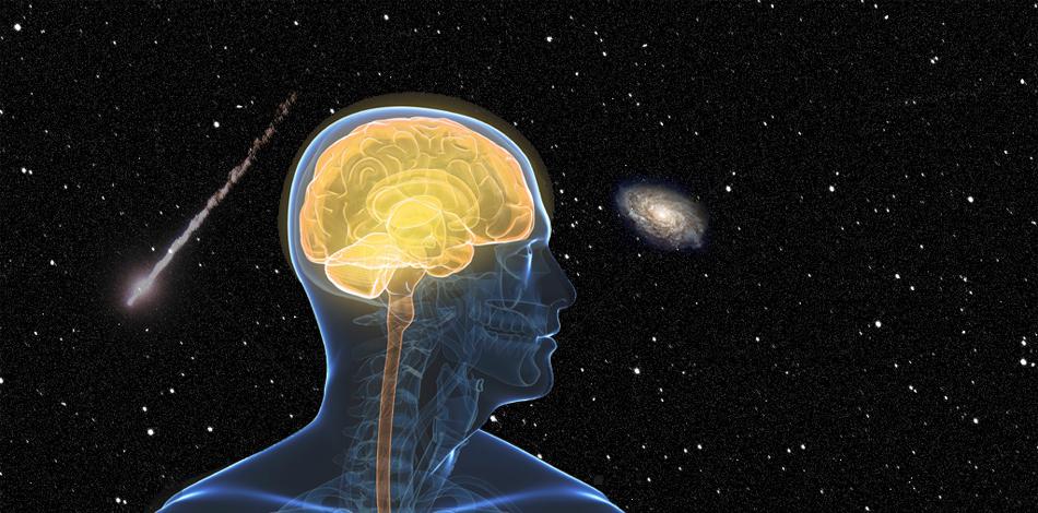Головной мозг Мозг — наиболее чувствительный к воздействию тепла орган. Мэтью Ле, физиолог, изучающий выносливость спортсменов в колледже Айдахо, рекомендует марафонцам постараться держать голову в холоде любыми способами, хоть прикладывая лед к затылку. Марафонские забеги заставляют тело увеличивать теплообмен, который довольно негативно сказывается на мозге. Кроме того, общая усталость может привести марафонца к самым настоящим галлюцинациям. Избежать этого эффекта помогут умственные упражнения, совмещенные с беговыми тренировками. Никто не предлагает вам решать судоку на дистанции в несколько километров — но, все же, попробуйте начать решать хотя бы простейшие примеры, когда почувствуете критическую усталость. Это поможет мозгу вновь прийти в тонус.