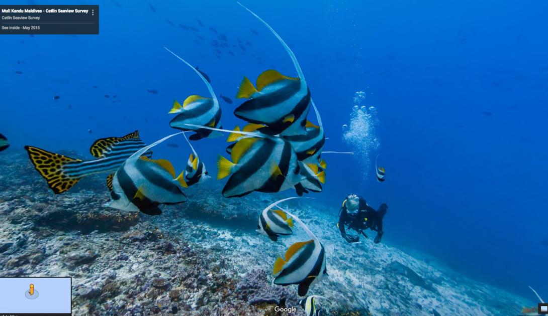 Вода на Мальдивах настолько прозрачна, что местные дайверы предпочитают бывать на берегу как можно реже.