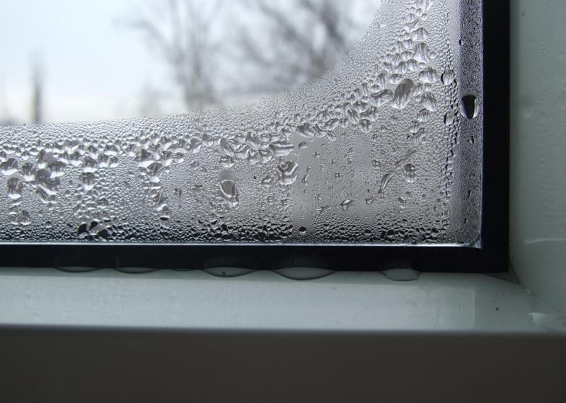 Откройте окно Звучит, как шутка — но на самом деле, открытое окно может спасти вас от простуды. Проведя весь день в душном помещении, любой человек имеет повышенный риск подхватить инфекцию. Свежий воздух убивает большинство вирусных частиц.