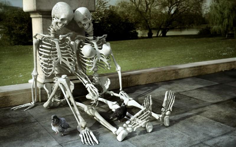 Скелет 7-10 лет – вот время, за которое происходит полное клеточное обновление костной ткани. В структуре скелета одновременно функционируют и старые и молодые клетки. При этом неправильное несбалансированное питание может повлиять в худшую сторону на качество новых клеток, вызывая многочисленные осложнения. Ежедневно костная ткань вырабатывает сотни миллионов новых клеток.