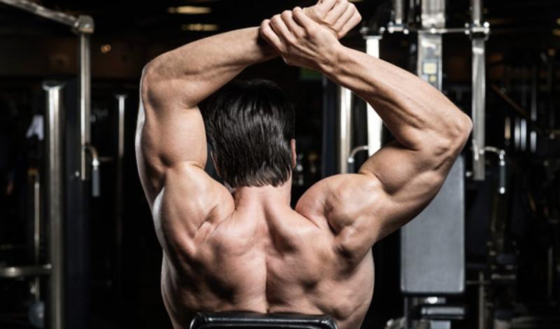 Быстрый прогресс Это фантастическое ощущение — добраться до своих пределов и увидеть максимум, который может показать собственное тело и дух. В зале, мы постоянно добавляем веса, увеличиваем количество повторов, делаем все, чтобы сделать большее. Но для постоянного прогресса нужно тренироваться с умом. Преодолеть плато, рано или поздно возникающее у каждого, поможет только грамотно построенное занятие.